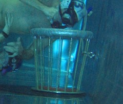 Unterwasserrugby-Torbefestigung Edelstahlbecken in Dresden